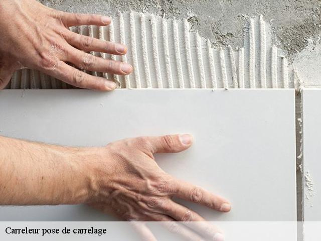 Carreleur pose de carrelage  62860